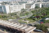 أستاذ بجامعة المنصورة يحصل على درجة دكتوراه العلوم (D.Sc.) في الصيدلة لأول مرة في مصر