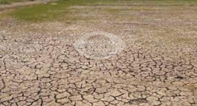 اراضى 42 قرية بمركز بلقاس مهددة بالبوار بسبب نقص مياه الرى